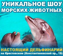 дельфинарий 2017
